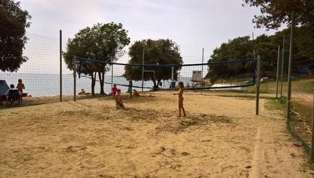 Colone Beach Volleyball