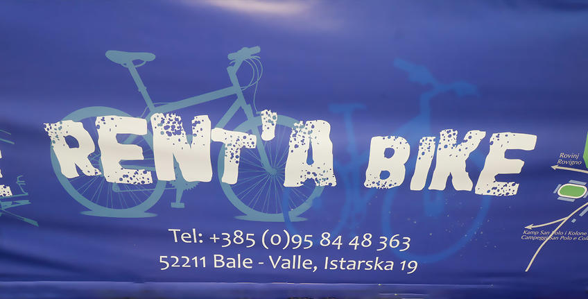 Bike rental in Bale [5]