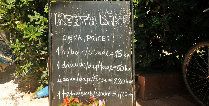 Bike rental in Bale [3]