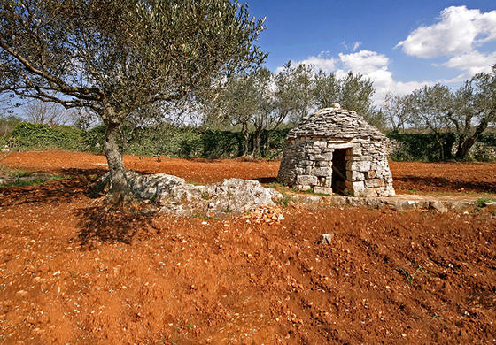 Bale's surroundings are paradise on Earth for all connoisseurs and lovers of olive oil and excellent